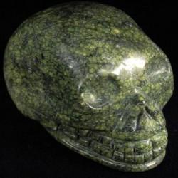 Jaspis Algae