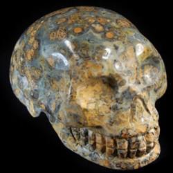 Jaspis luipaard schedel