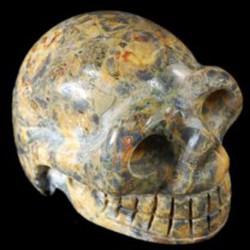 schedel Jaspis luipaard