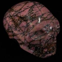 gestreept-rhodoniet-schedel