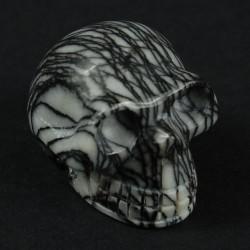 Jaspis Zebra web schedel