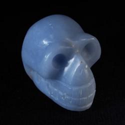 Angeliet (Engelensteen) schedel