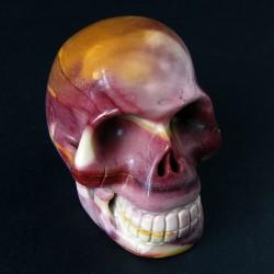 New skull Mookaiet schedel