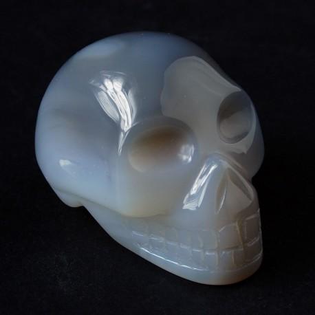 Grijs Agaat schedel