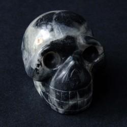 schedel-Agaat silver leaf