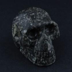Hornblende-schedel