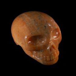 oranje calciet schedel