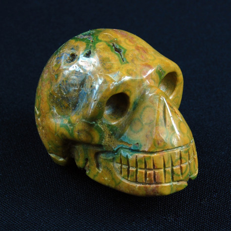 Oceaan Jaspis schedel