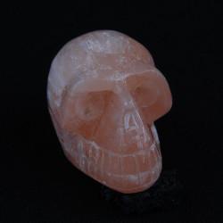 Perzik Seleniet schedel