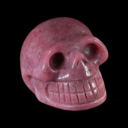 Rhodoniet schedel