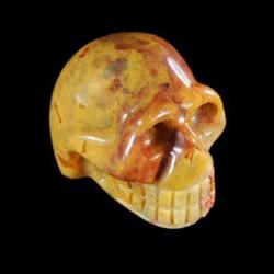 crazylace schedel