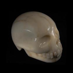 Calciet marmer schedel