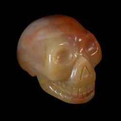 speciaal Chalcedoon schedel
