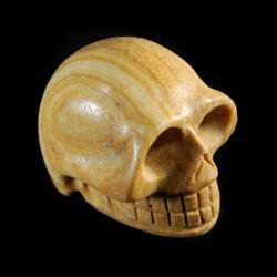 picture jaspis schedel
