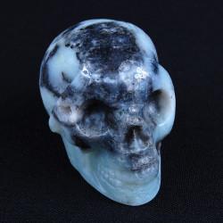 Amazoniet-schedel