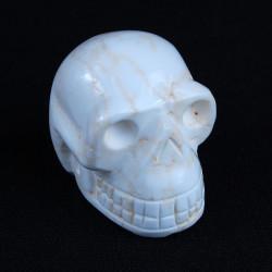 Magnesiet schedel
