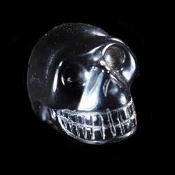 Apachetraan schedel