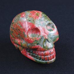 Unakiet-schedel