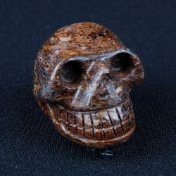 Bronziet schedel