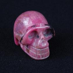 gestreept rhodoniet schedel